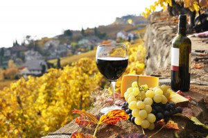 WineandGastronomyTourSpain